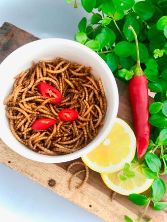 Ristede Melorme Chili & Lemon 25g | Spiselige insekter