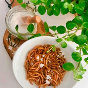 Ristede Melorme Saltede 25g | Spiselige insekter