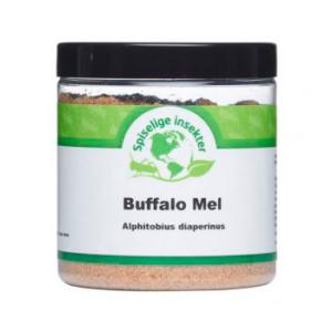 Buffalo larve mel fra Din insekt butik