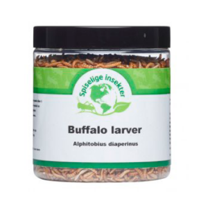 Frysetørrede buffalo larver til madlavning