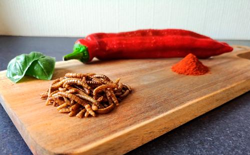 Insekt snack med smagen af mexico